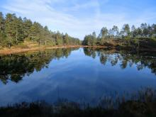 Utsikt fra 4. post på Breland